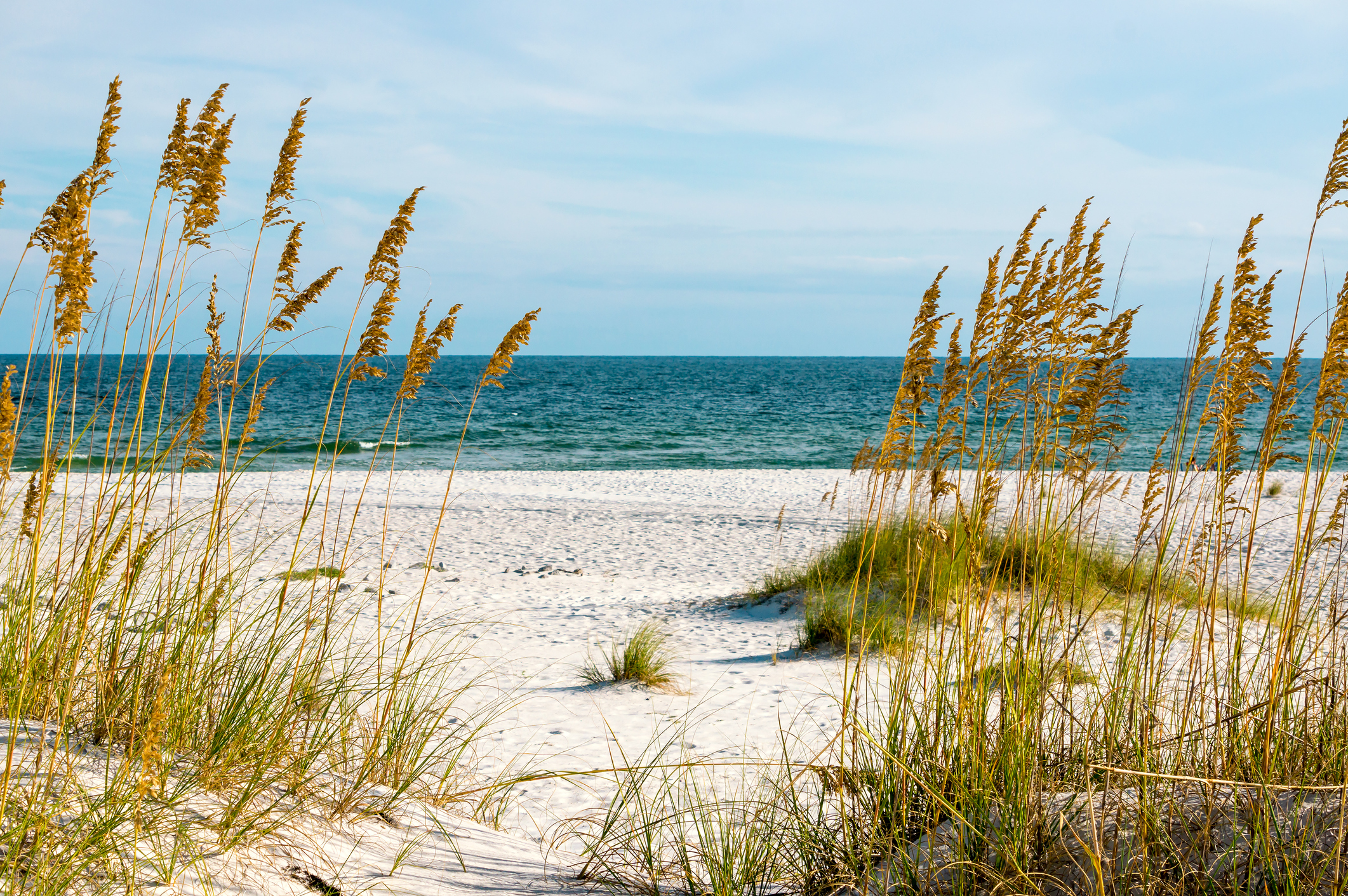 Best Alabama Travel Guides Gulf Coast.