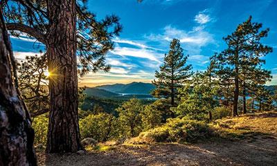 Big Bear Cool Cabins Vacation Rental Management Company Big Bear Lake California