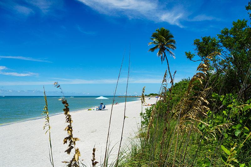 Captiva Island Florida Lee Island Coast Things To Do