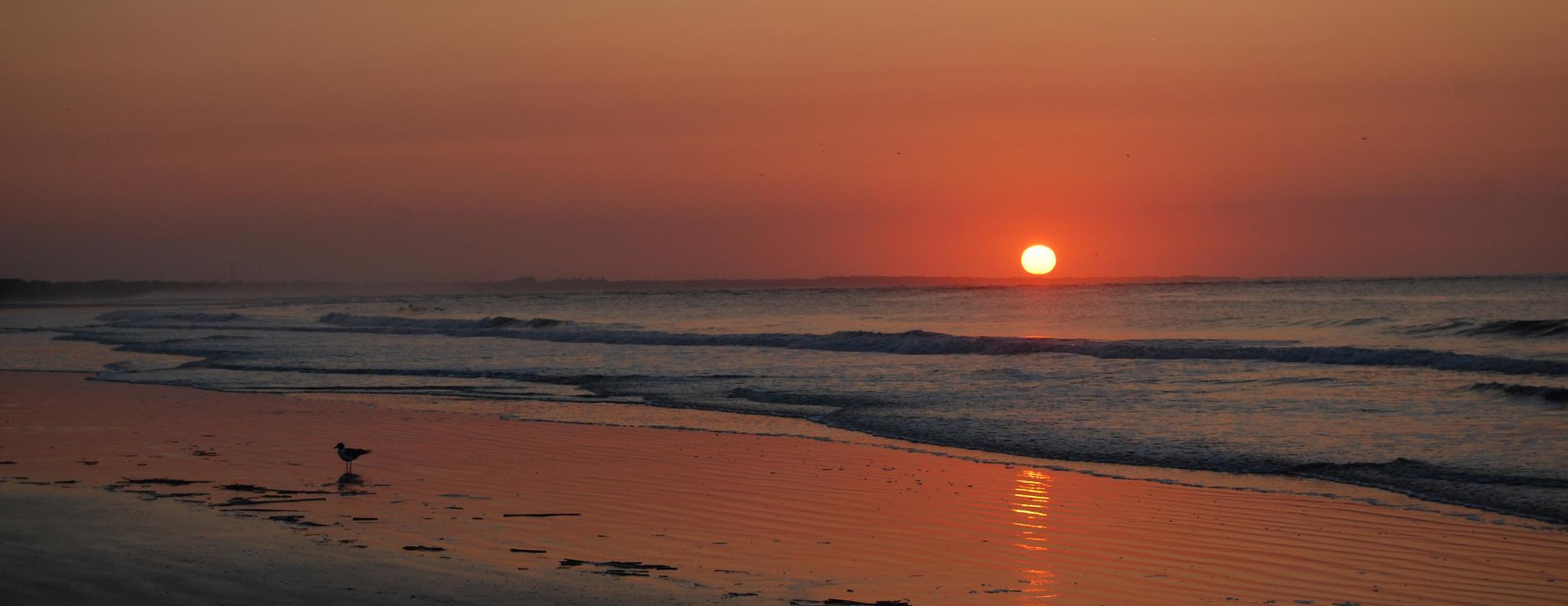 Coastal Getaways of SC Vacation Rental Management Company Charleston Area Seabrook Island