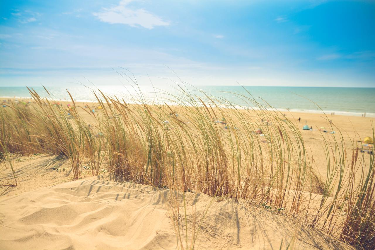 Coldwell Banker Resort Realty Beaches of Delaware