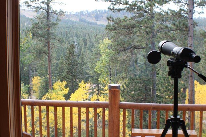 Executive Lodging Deer Mountain Deadwood Black Hills South Dakota