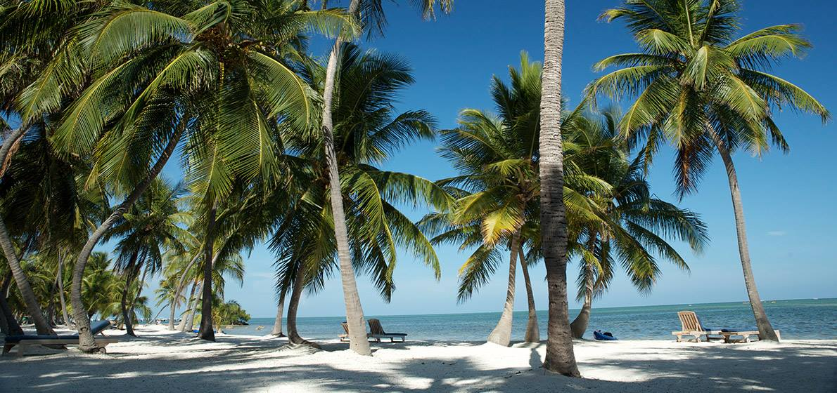 Florida Keys Realty Beaches in the Lower Florida Keys