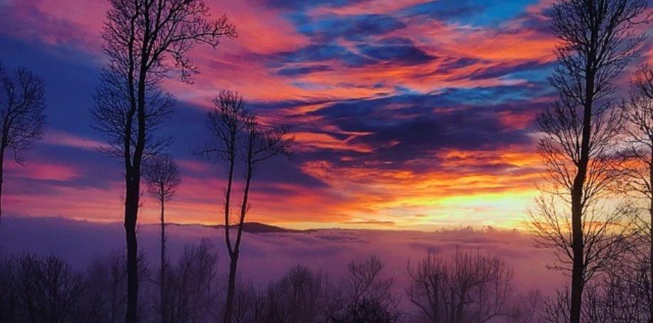 Foscoe Rentals Property Management Company Sunrise Echota Ridge North Carolina