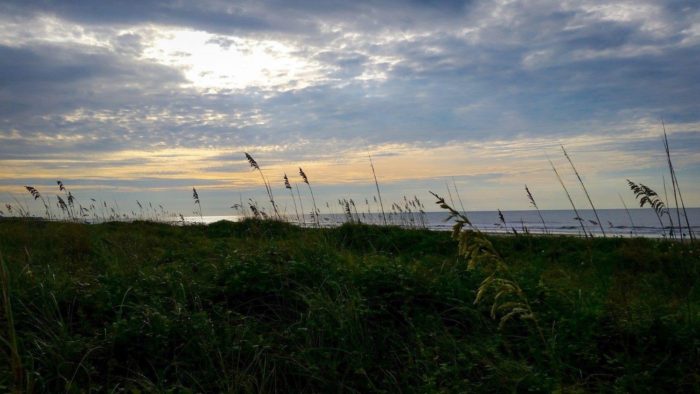 Isle of Palms Charleston Beach Area South Carolina East Island Rentals