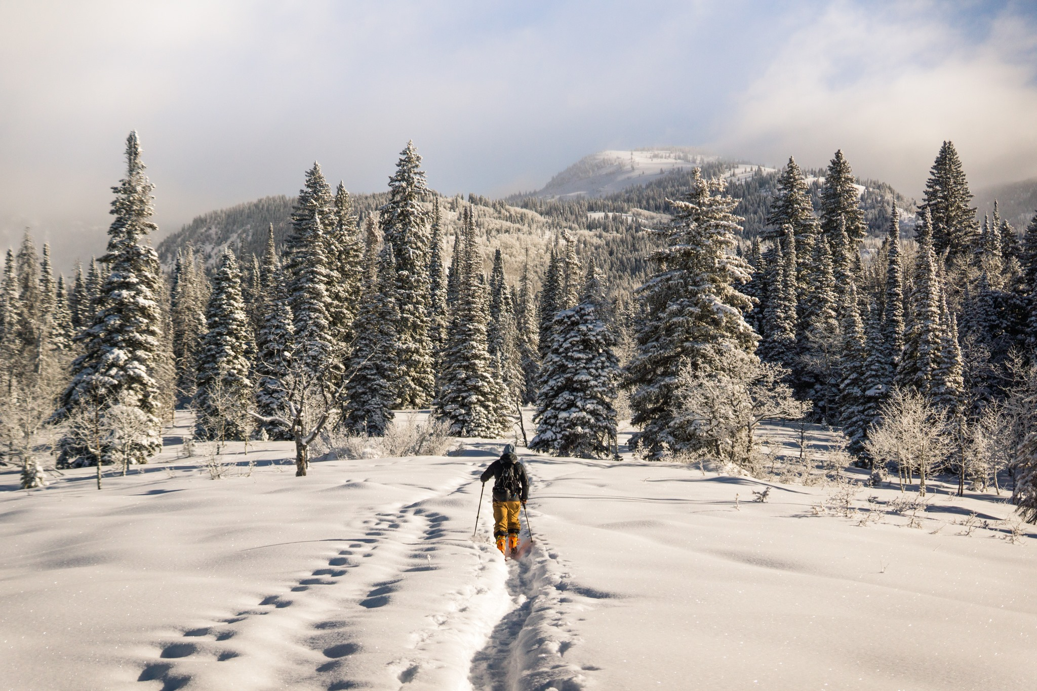 Mt Baker Lodging Mount Baker Washington Cross Country Skiing.