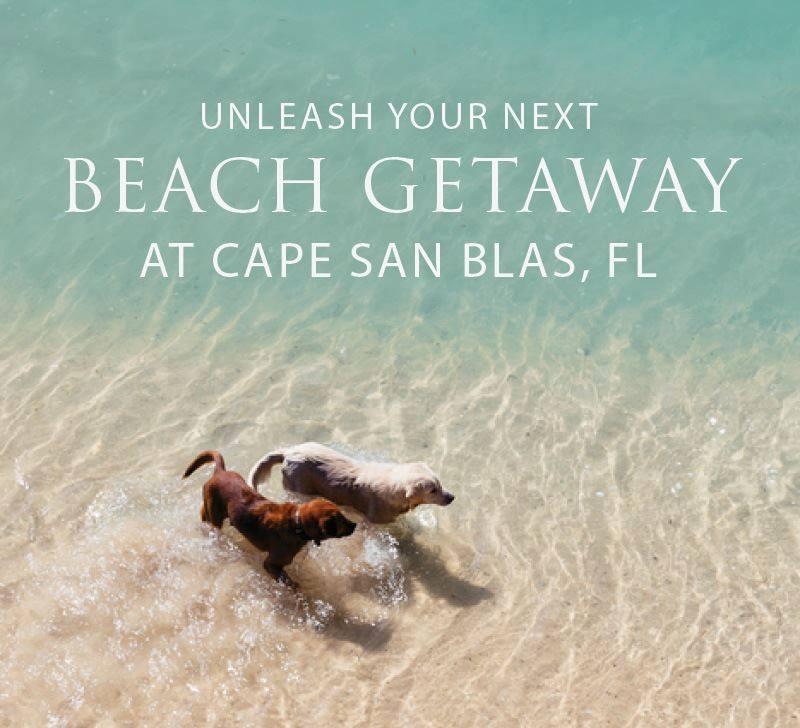 Natural Retreats Cape San Blas Pet Friendly Vacation Rentals