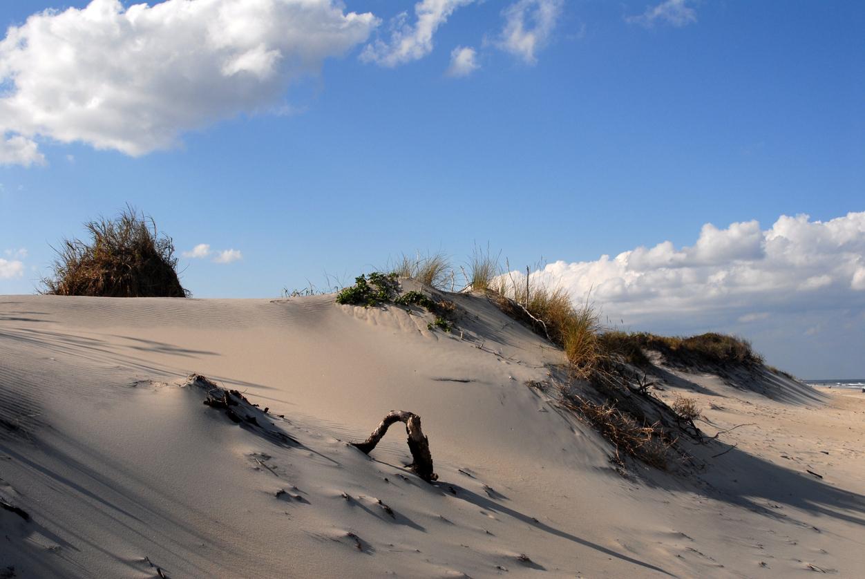 Northern Beaches Outer Banks North Carolina.