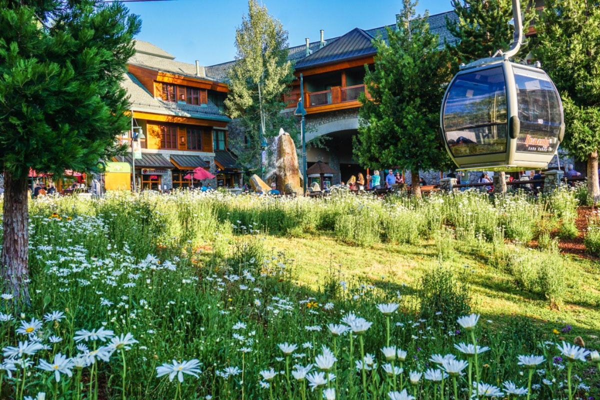 Pyramid Peak Properties Real Estate Vacation Rental Management Company South Lake Tahoe Fallen Leaf Lake Kirkwood Area California.