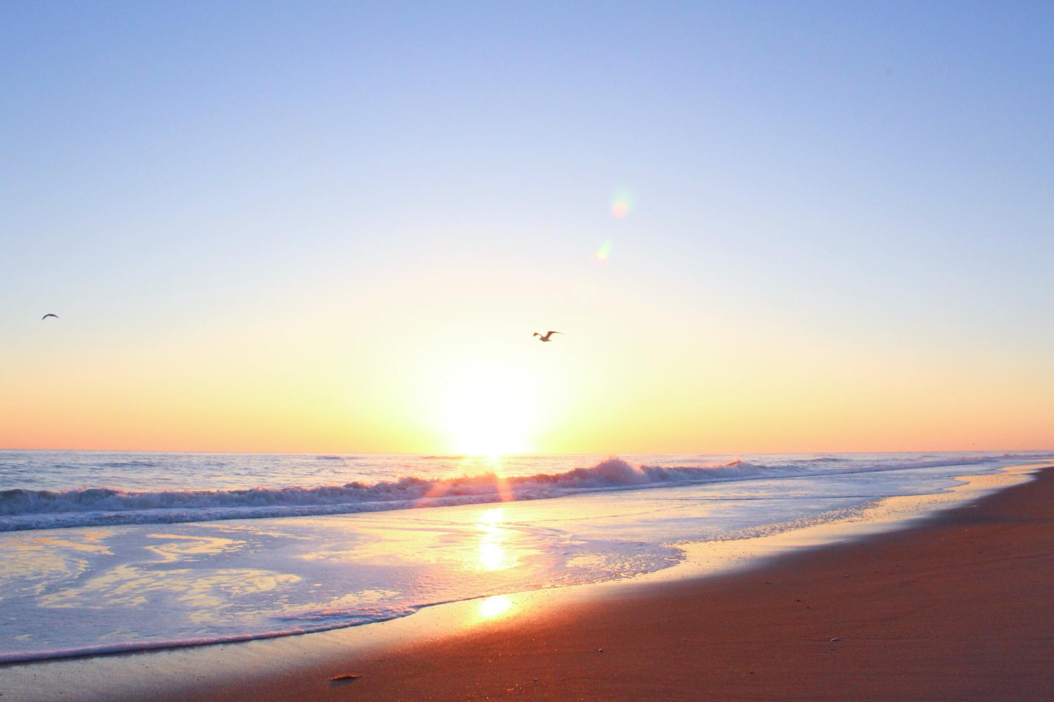 Southern Shores Realty Southern Shores Beach Outer Banks NC