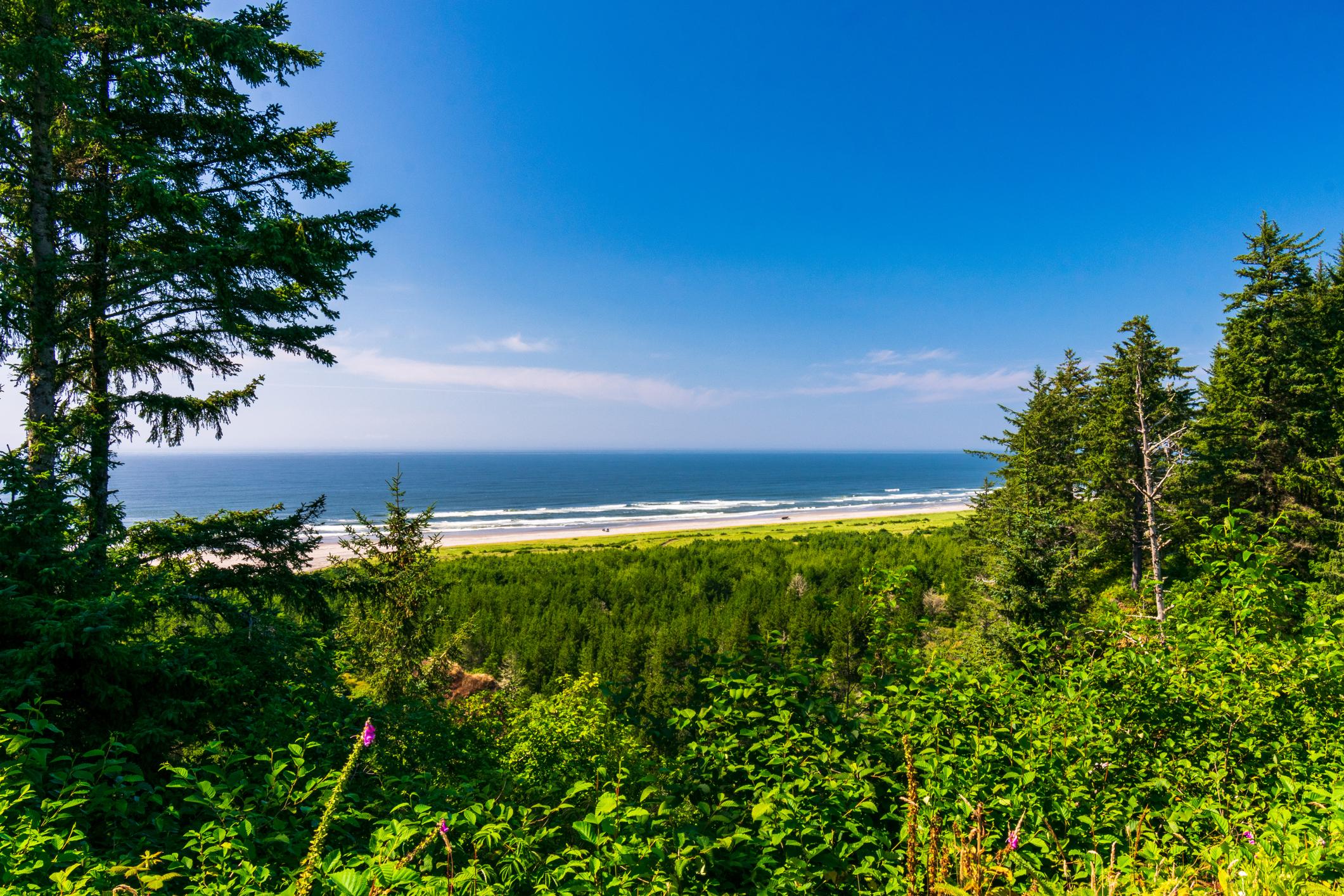 Long Beach Peninsula Washington State Coastline