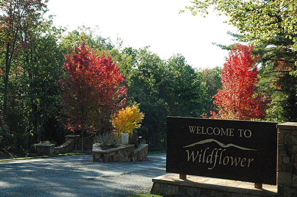 Wildflower Cabin Rentals North Carolina Smoky Mountains Nantahala Area Franklin