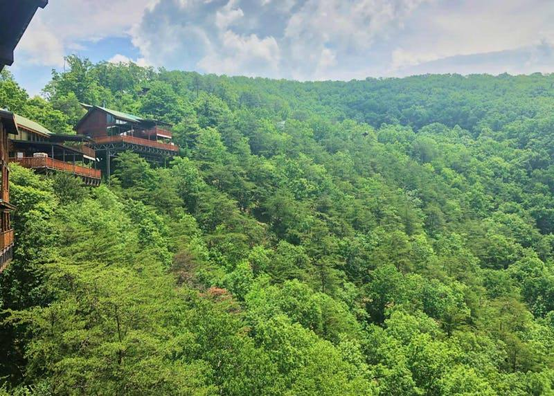 natural retreats great smoky mountains wears valley brothers cove community