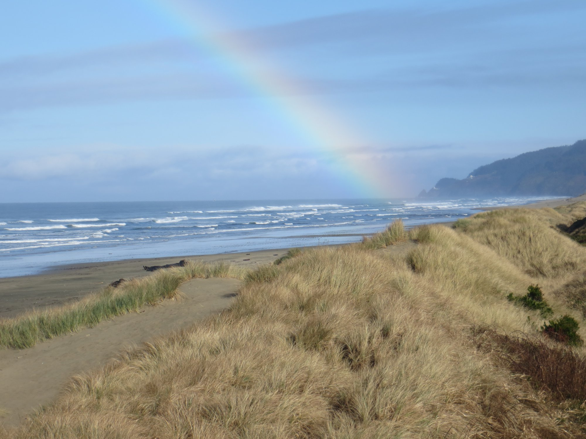 Whales Watch Vacation Rentals Oregon Dunes Heceta Beach Florence Oregon