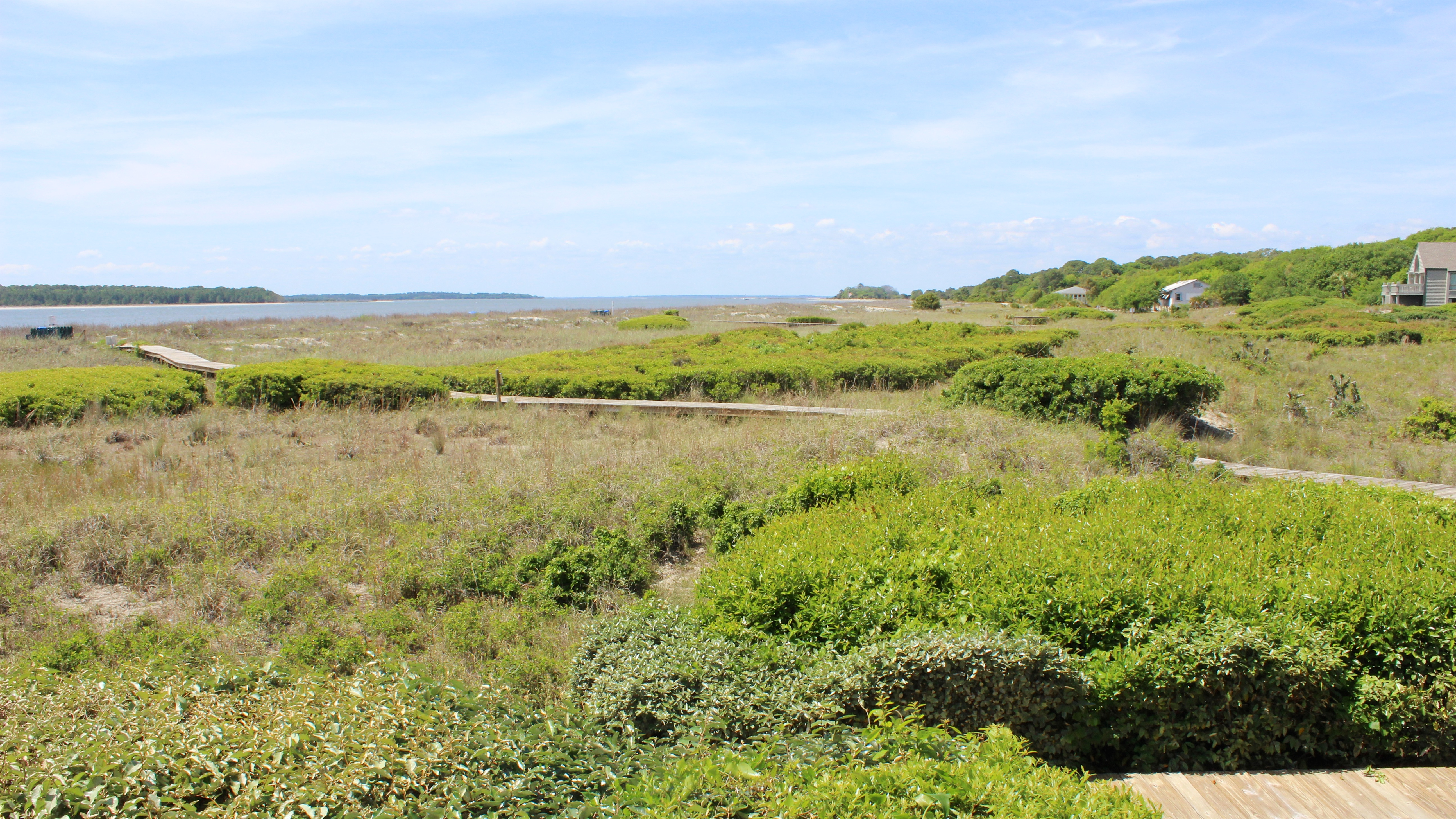 Watch the wildlife and birds wander through the protected dunes.