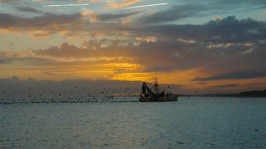 Watch the sunset and fishing boats while sitting on the deck with a cool drink.