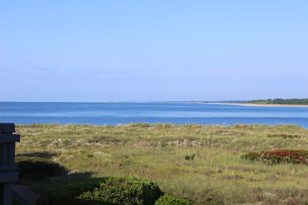 See shrimp and sailboats meander by and the wildlife grazing in the dunes.