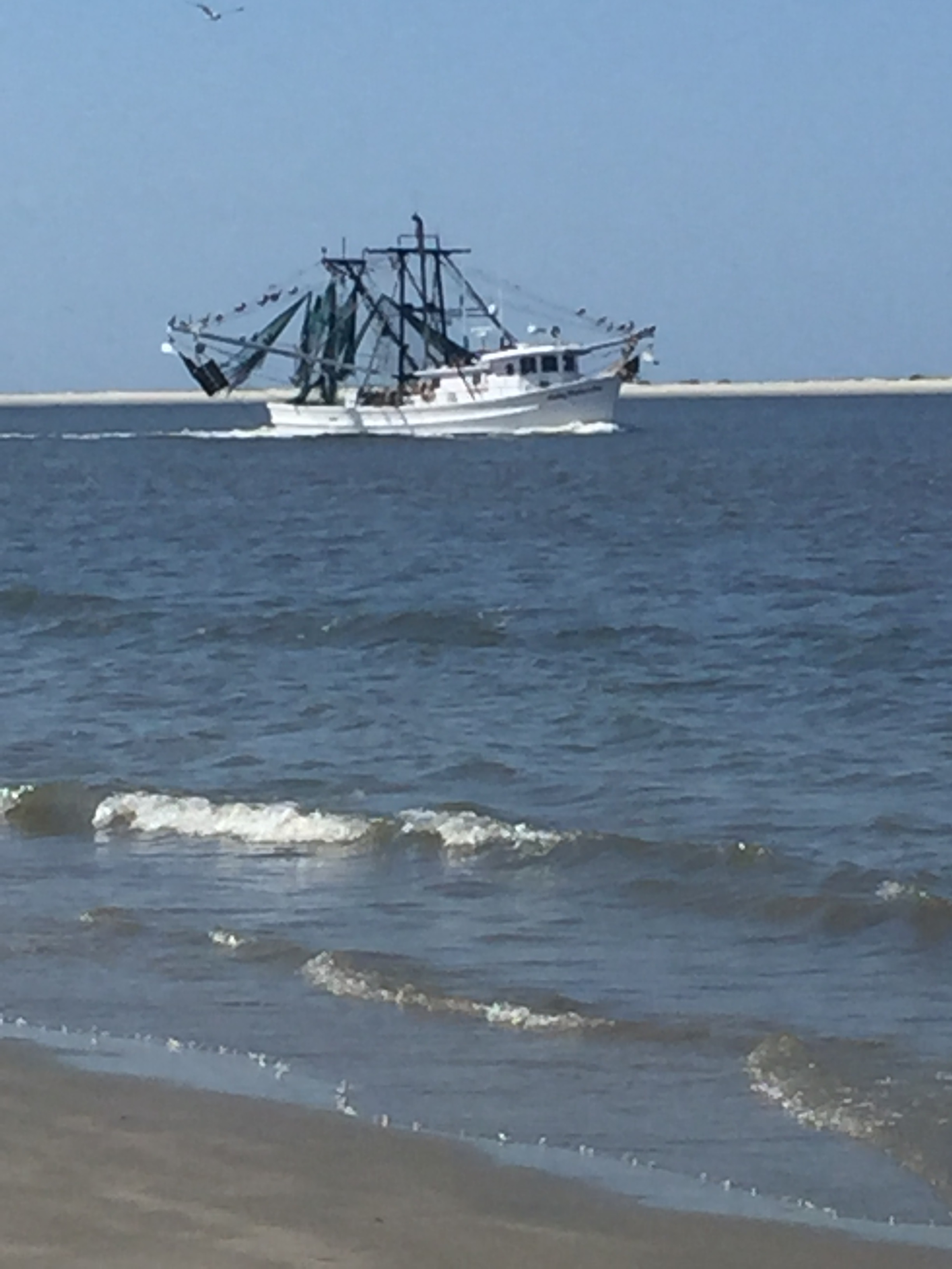 Watch the shrimp boats float by.