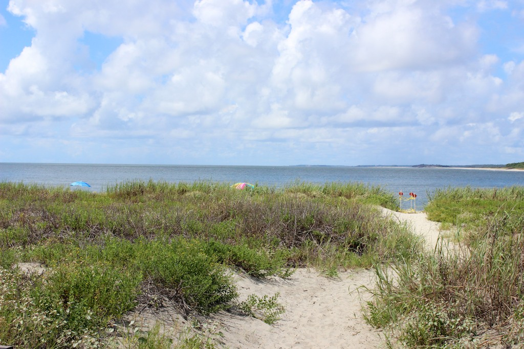 Step through the sand to the gentle waves of the Edisto River.