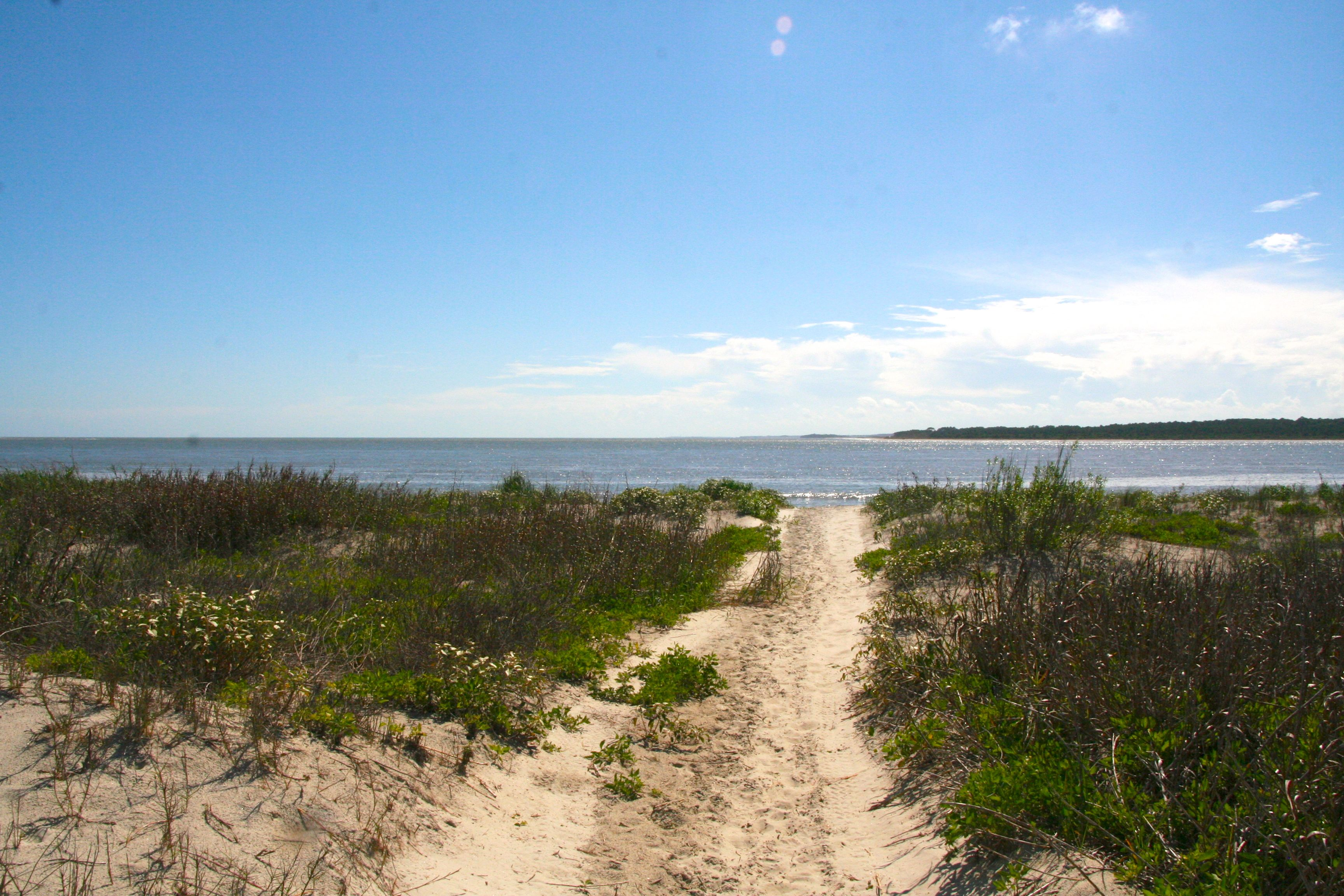 Soft waves and dunes lush with vegetation reflect the beauty of Seabrook.