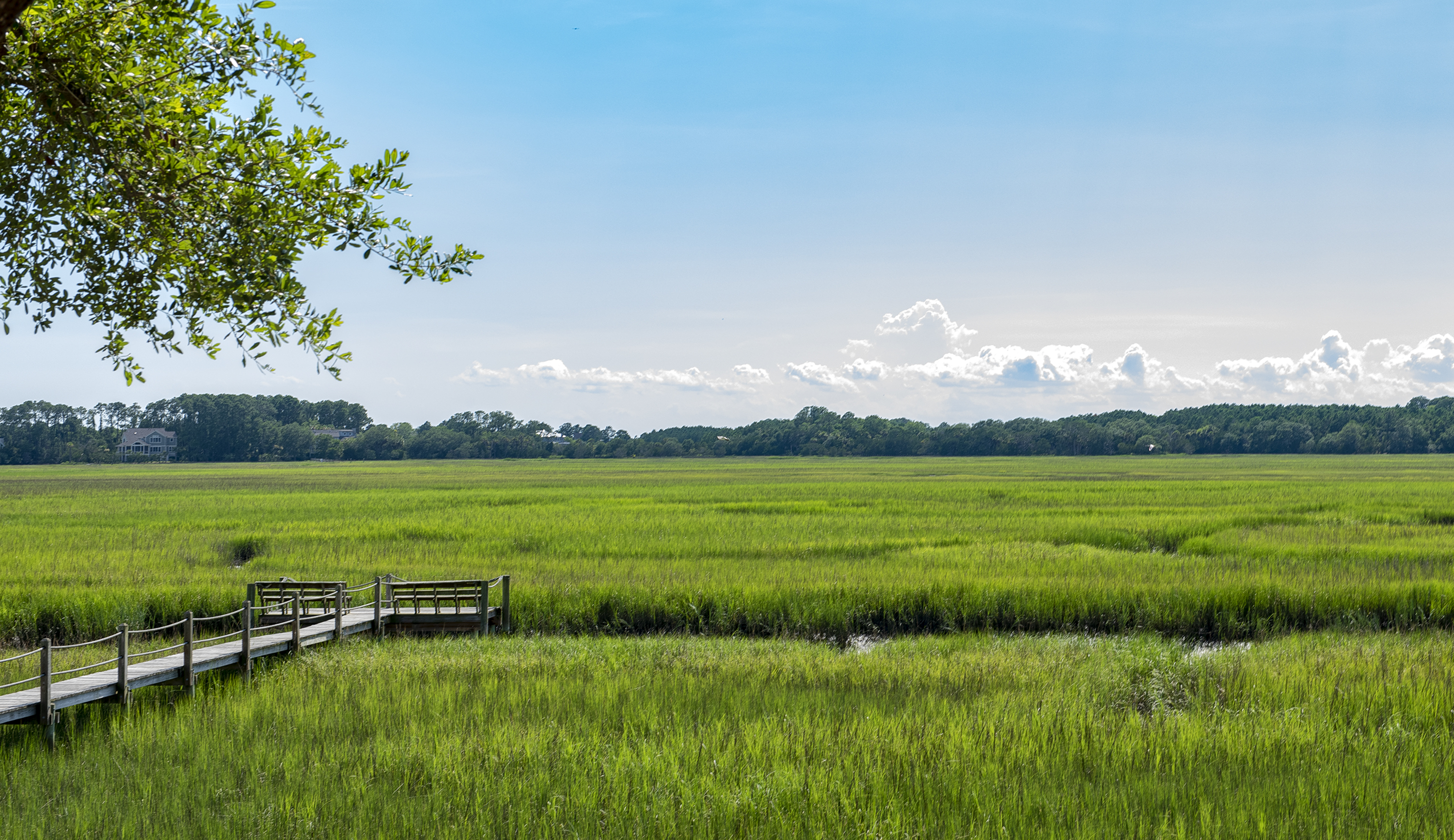 Amazing marsh views can be seen from most rooms.