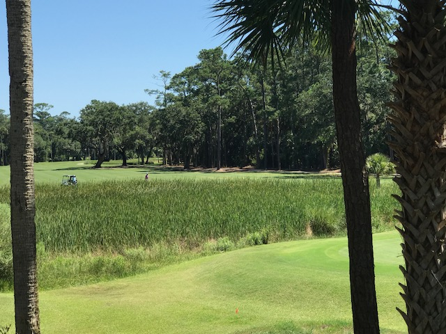 Enjoy watching the golfers try to avoid the marsh.