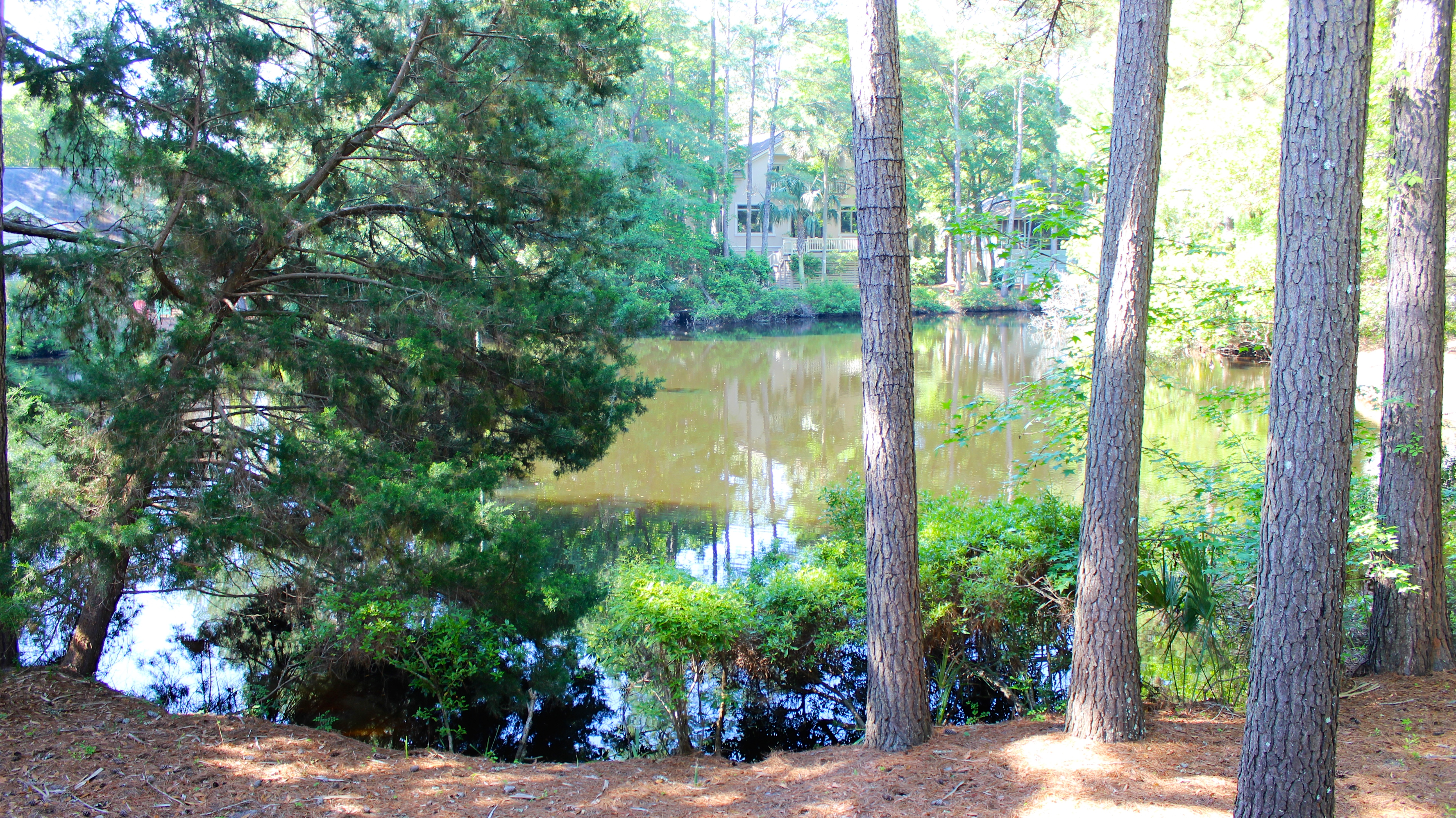 Sitting on a peaceful lagoon, you will love the natural surroundings.