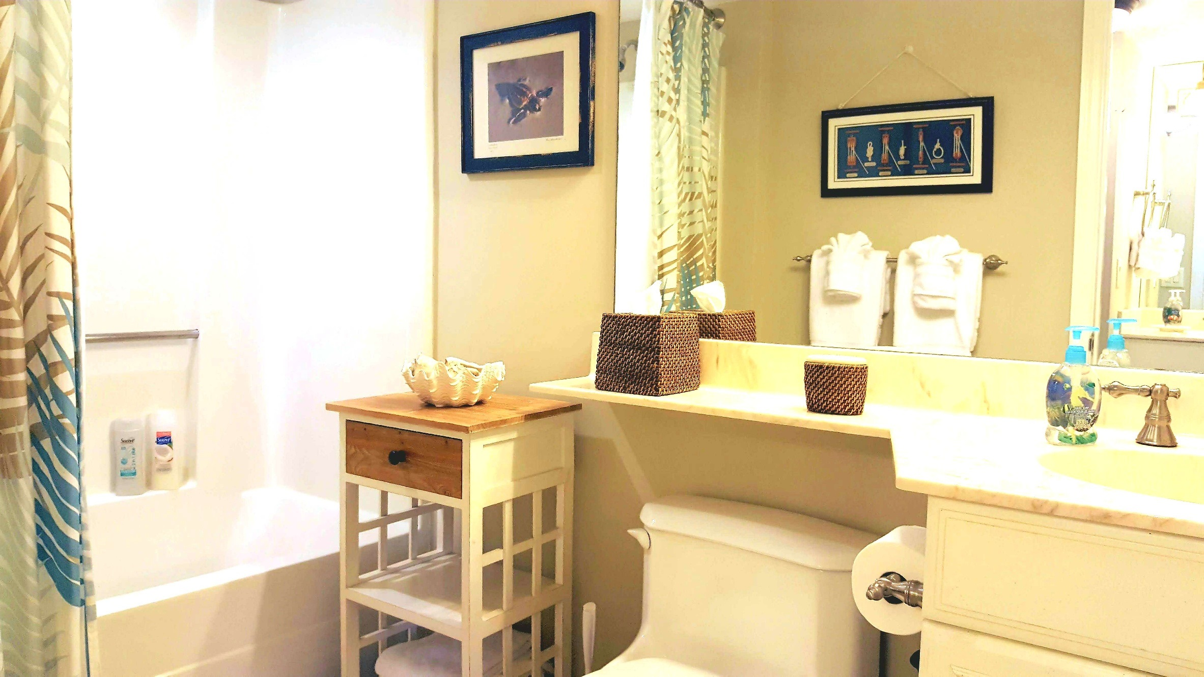 Second bathroom with tub-shower and single sink vanity.