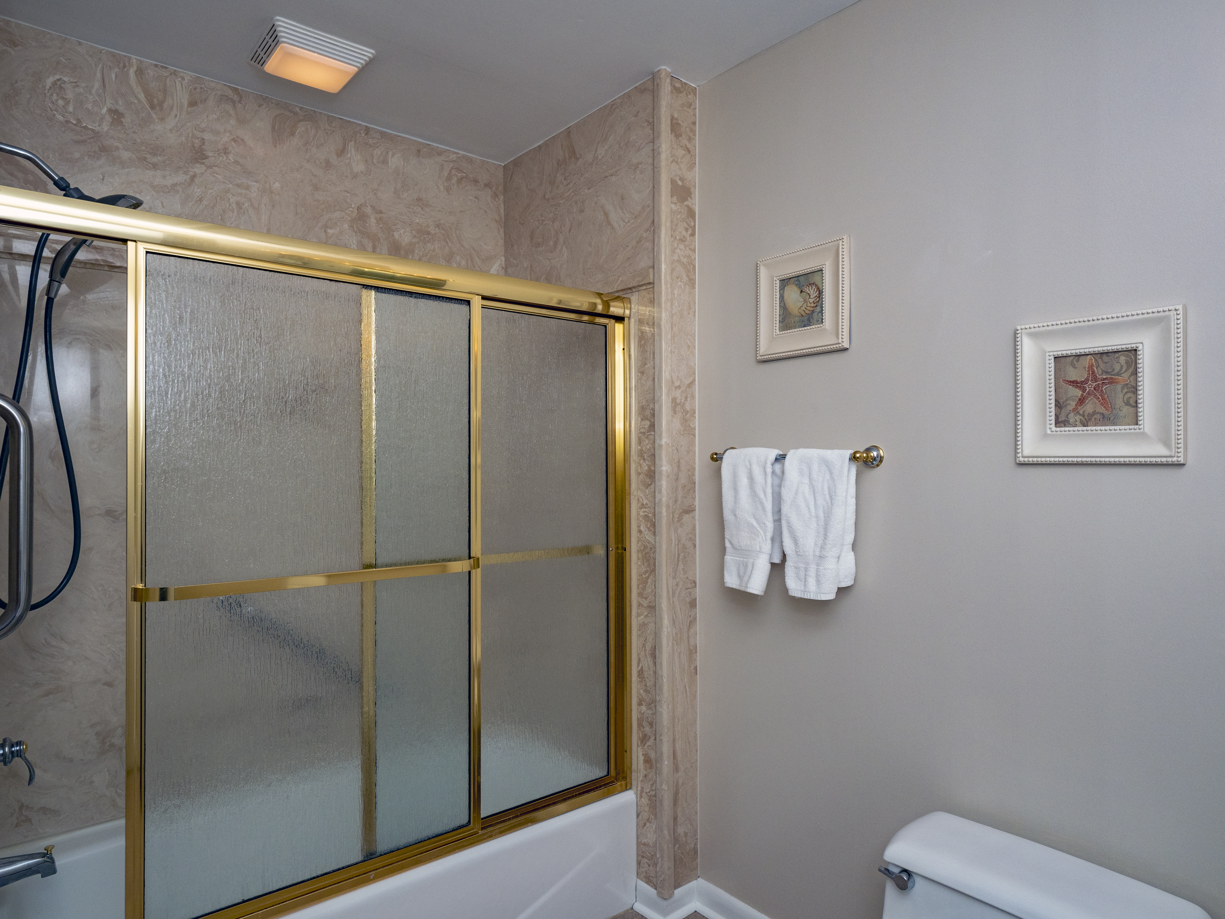 Guest tub/shower combination