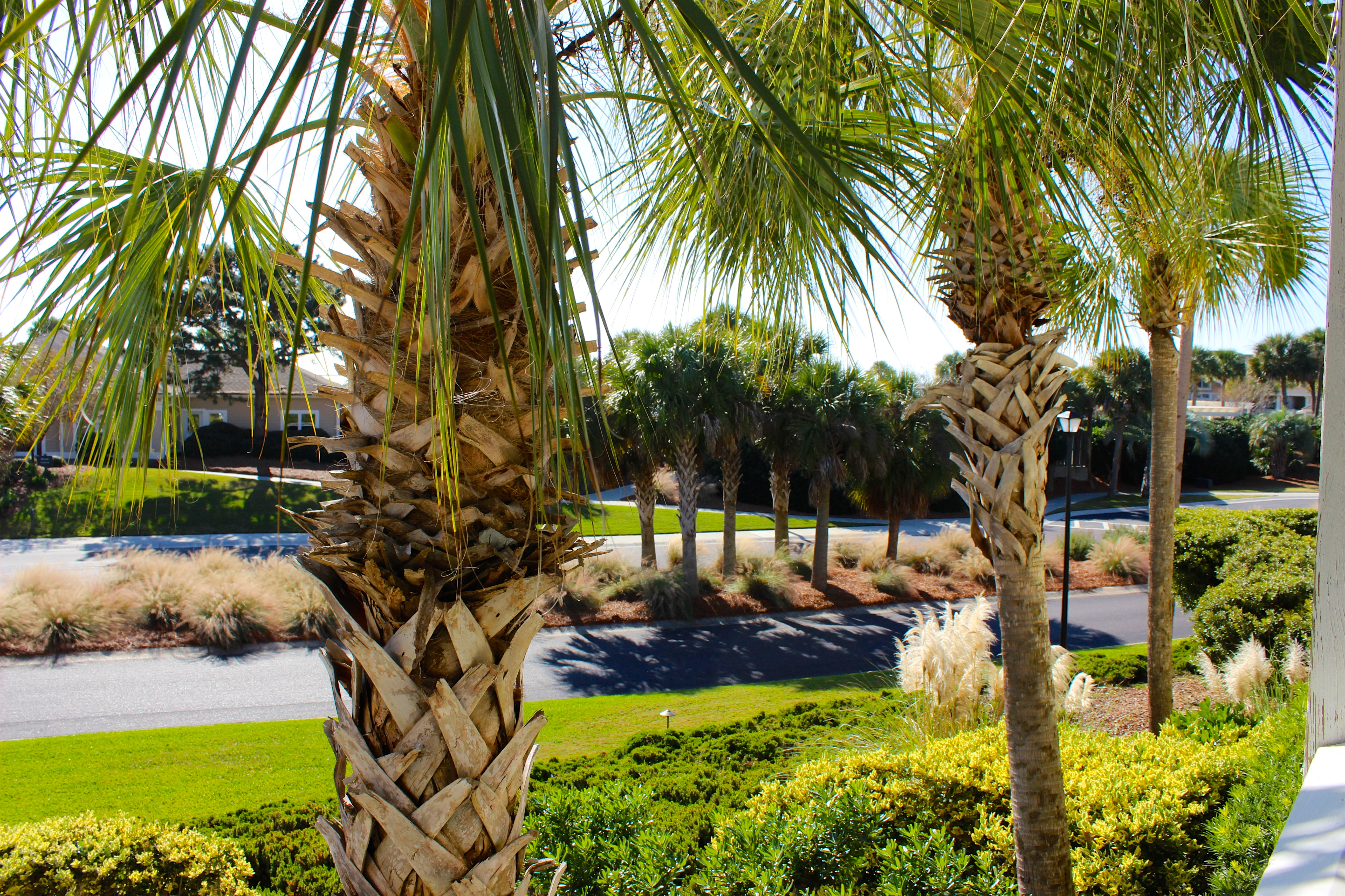 The Beach Club pool complex and Island House clubhouse are steps away.