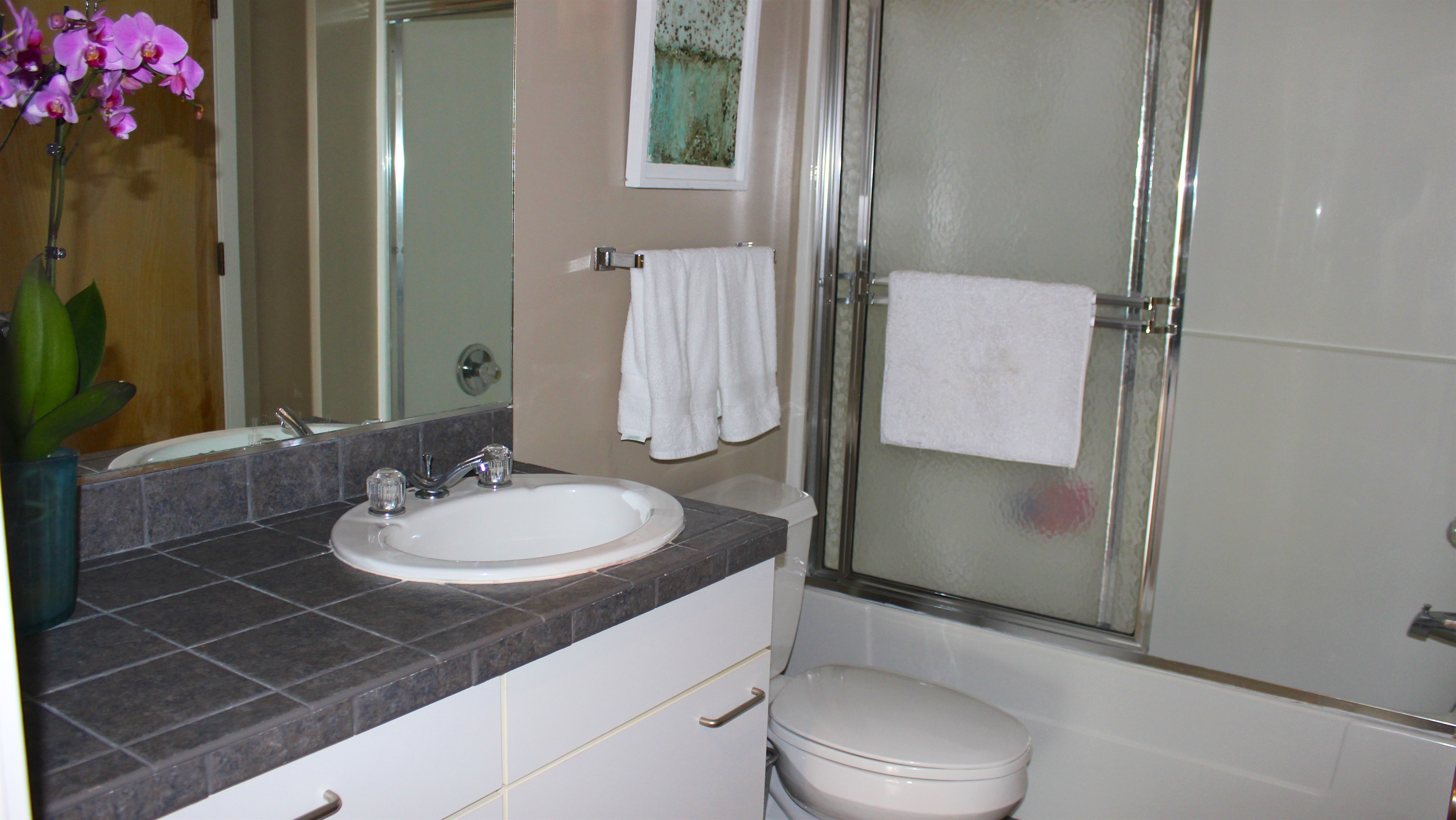 The bath is accessible from the bedroom & hall & features tile counters.