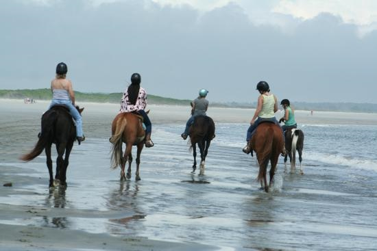 Take a horse back ride on the beach