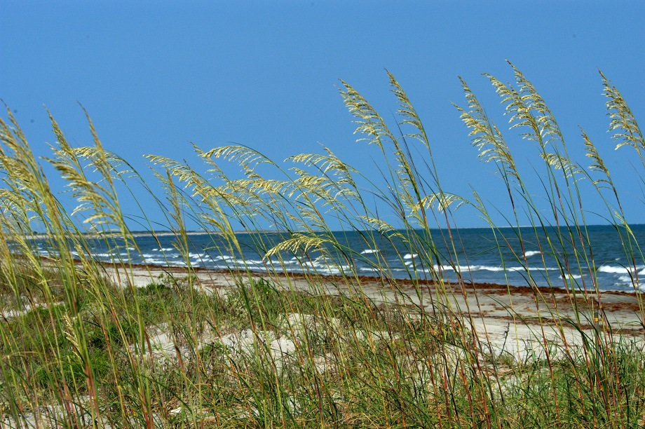 Relax and enjoy the many wonders of Seabrook Island