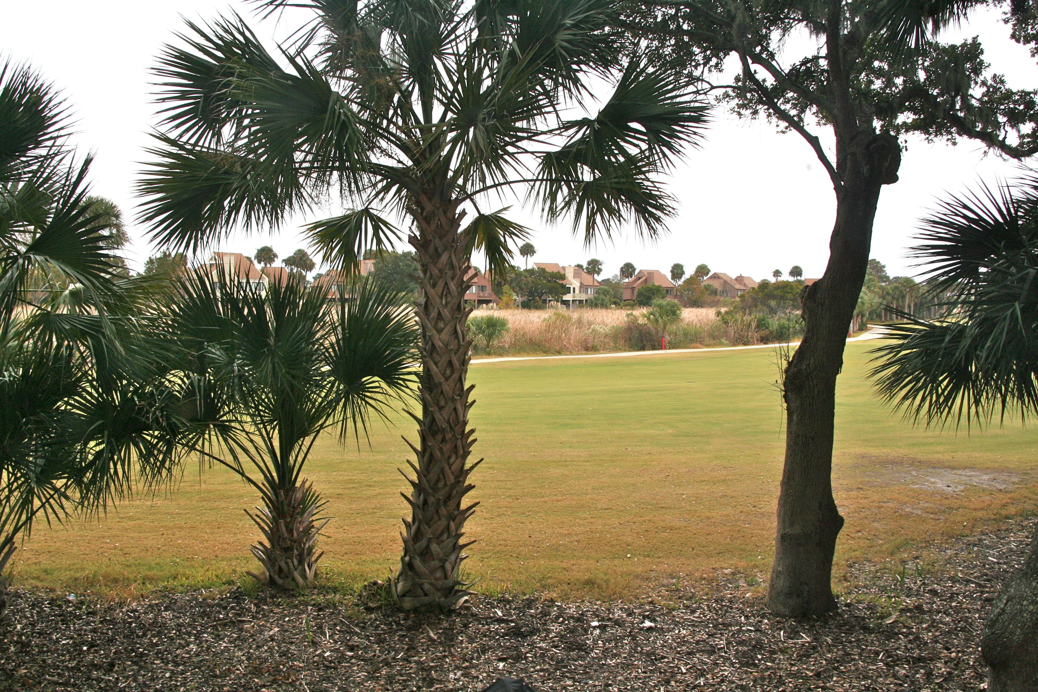 Enjoy the golf course and marsh view from the sunroom.