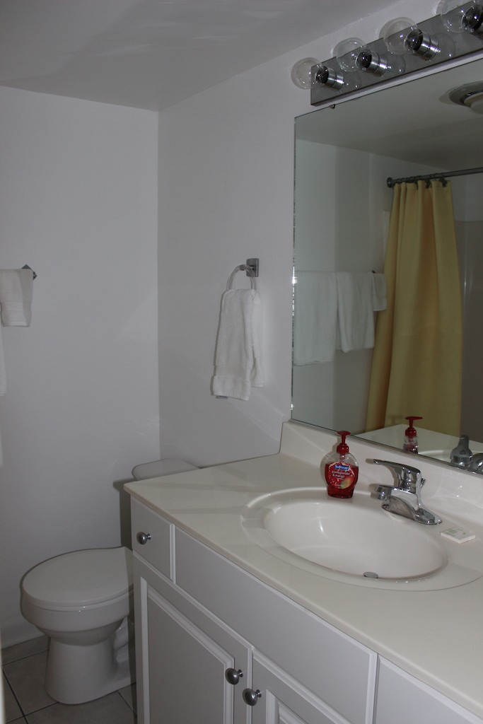 The bathroom is accessible from the hall and has a shower/tub.