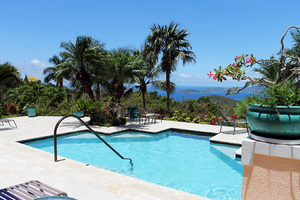 Pool with palms and Ocean View