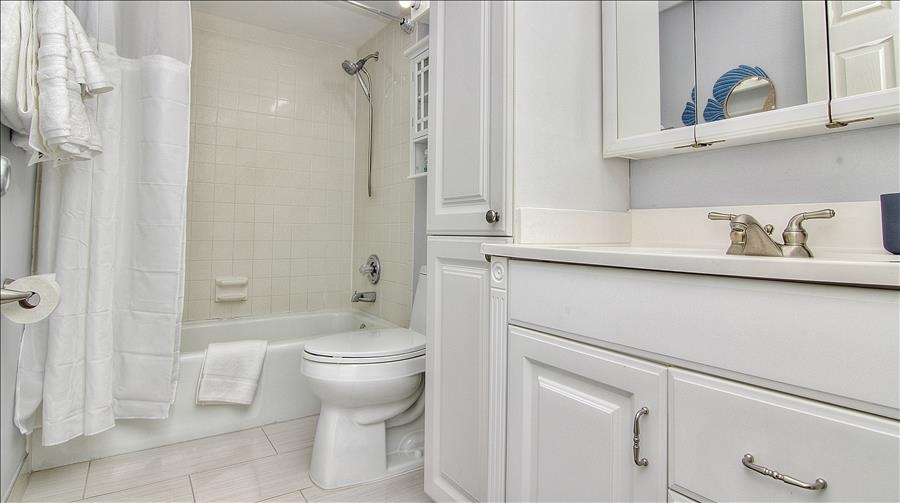 Tub/Shower Combo in Guest Bath