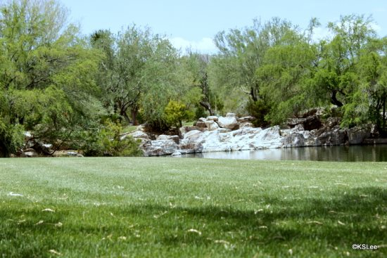 FR-Vistoso_Golf_Villa_220-Tucson-Arizona-24