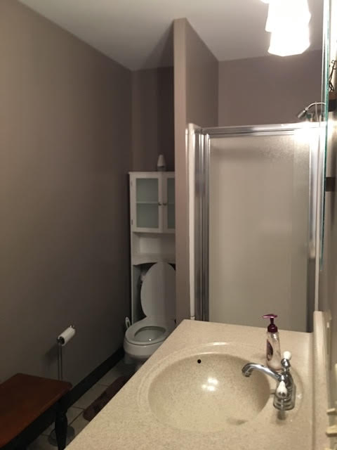 The Silver Star: Ellicottville -  Downstairs Bathroom