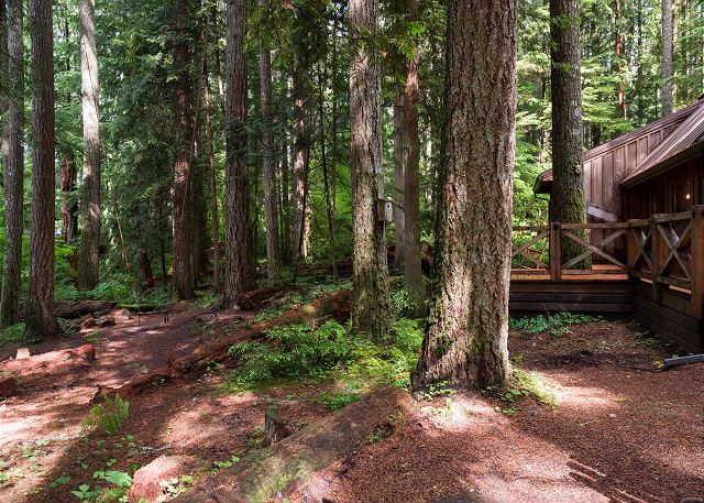 FR-Sycamore Lodge-Rhododendron-Oregon-40
