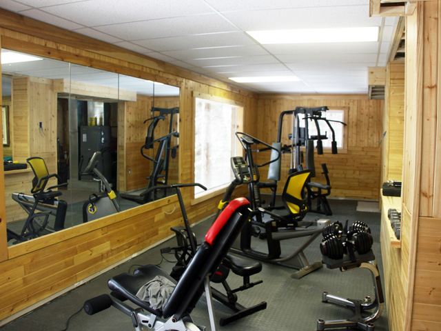Gym/exercise area