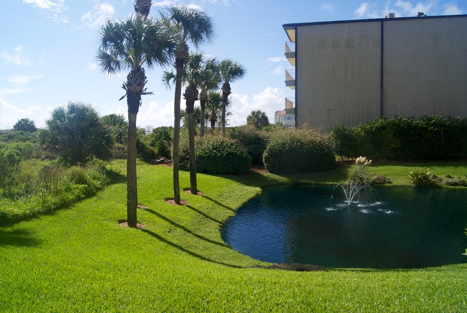 Side view from patio