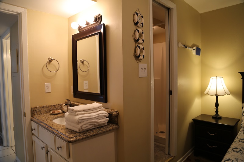 Guest Bathroom - Shower