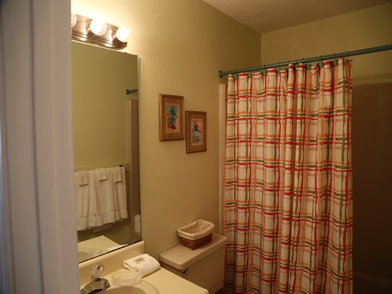Hall bathroom - shower/tub combo