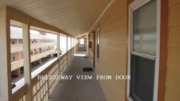 View from Breezeway