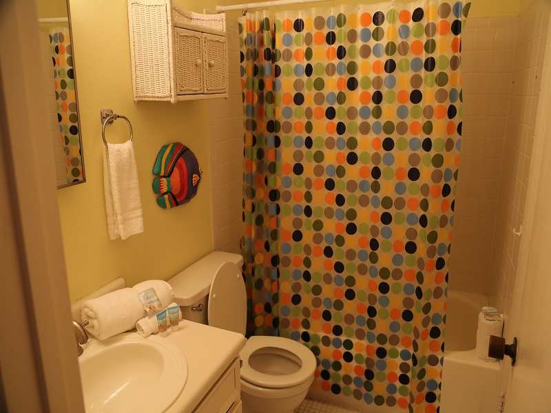 Second bathroom - shower/tub combo
