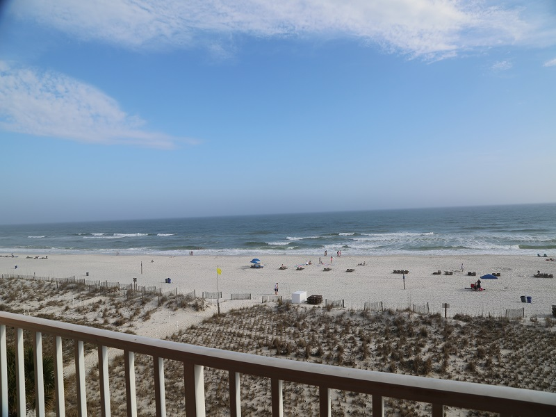 View from gulf front balcony!