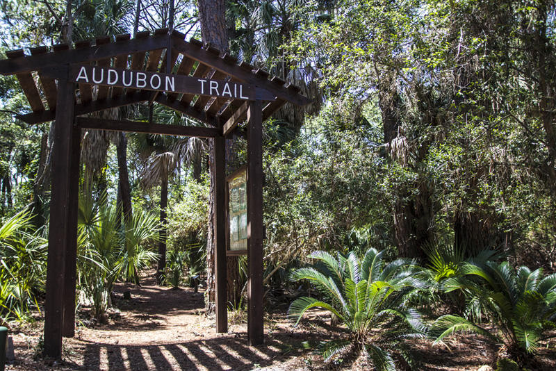 Explore nature on the Audubon Trail.