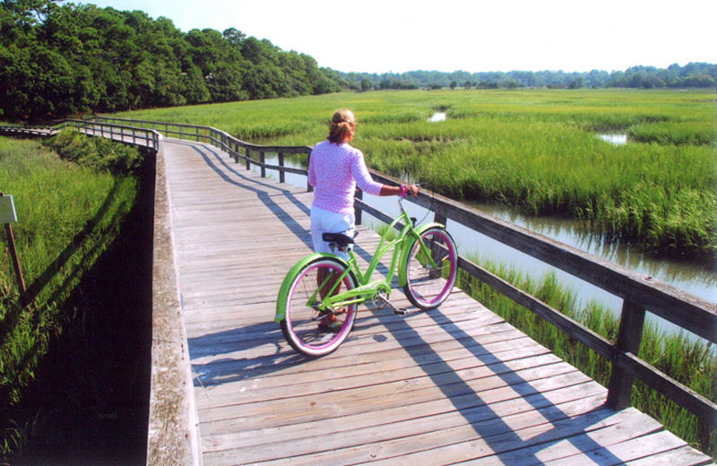 Rent a bike at Island Rentals and explore the island.
