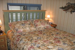 Bedroom with queen bed and TV